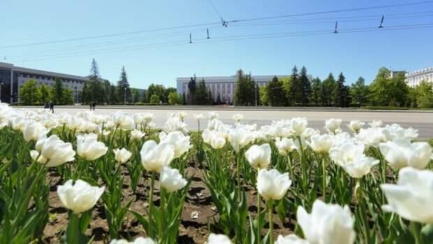 Минсоцзащиты РФ не собирается ежегодно продлевать майские праздники