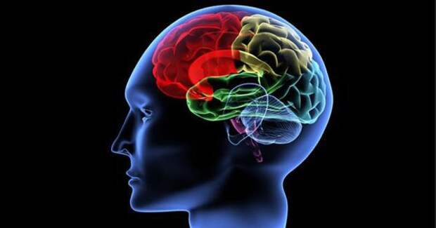 10 опасных привычек медленно убивающих твой мозг