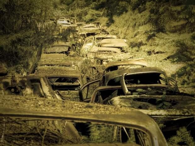 Громадная пробка вбельгийском лесу