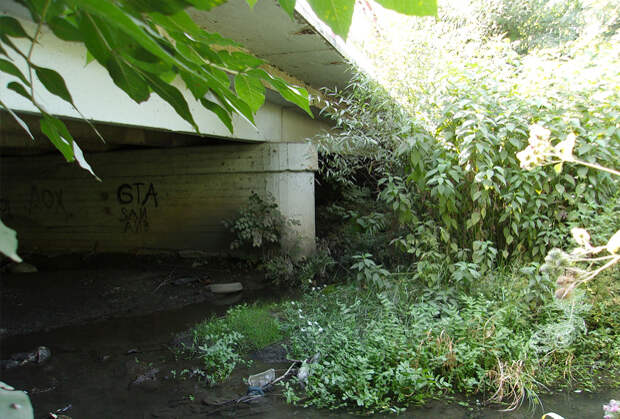Мост, под которым была найдена одна из жертв Андрея Чикатило
