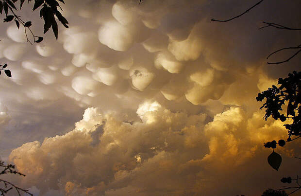 Вымеобразные облака