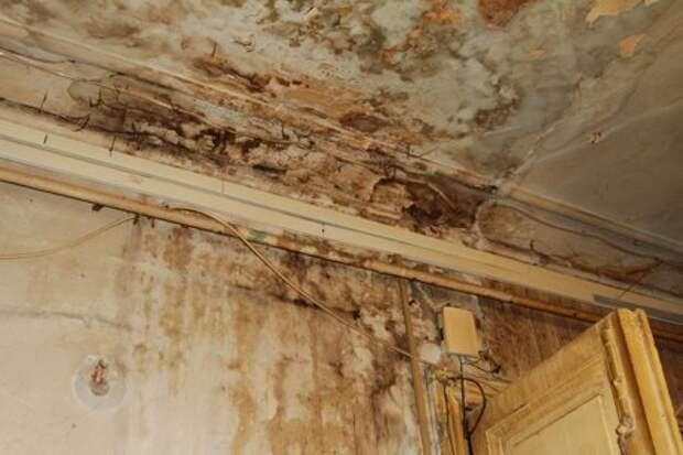 Светлая трешка на месте убитой двушки в старом фонде (Петербург)