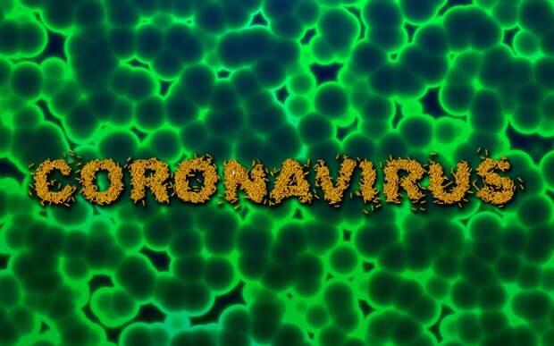 В Крыму выявлены 11 новых больных коронавирусом, — Аксенов