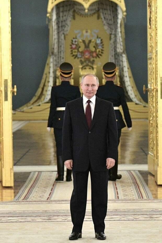 "Фото от тг-канала ""Пул №3. Владимир Путин."