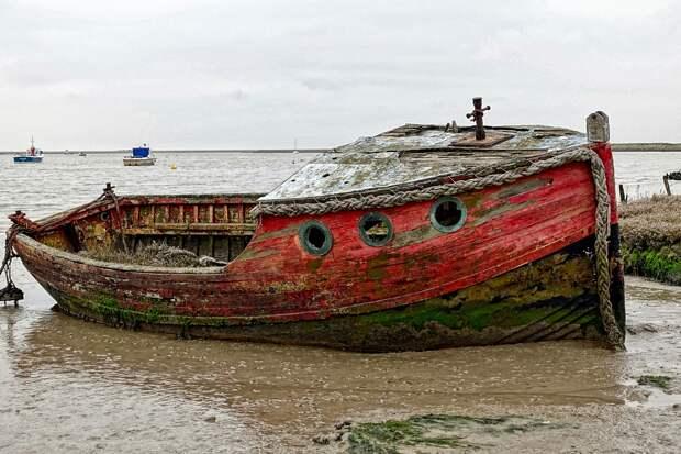 Фрагменты затонувшего в XVIII веке судна нашли на дне Красного моря