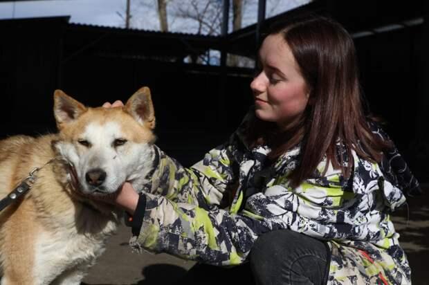 В «Сострадании» помогают животным найти дом, а людям – тепло