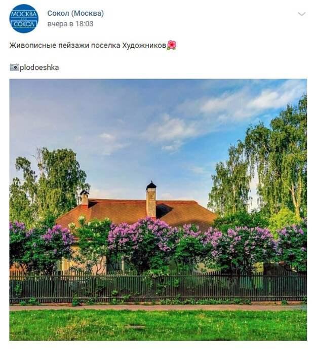 Фото дня: яркие краски лета в Поселке Художников