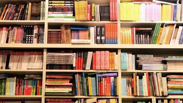 Учебники и пособия — прибыльный бизнес при правильном подходе