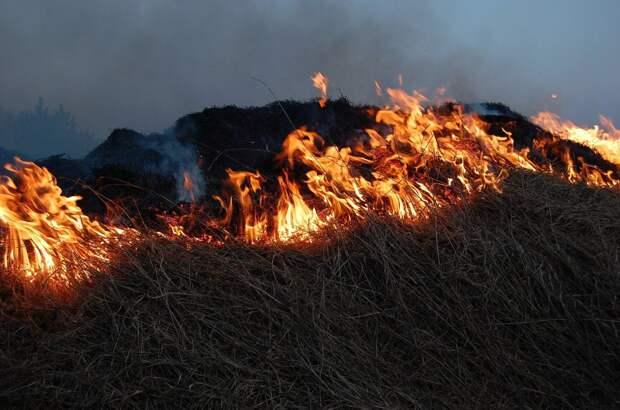 Удар стихии: как партии предлагают бороться с последствиями пожаров в Якутии