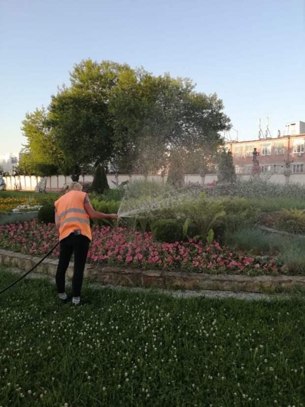 В Бабушкинском организовали полив цветников и газонов