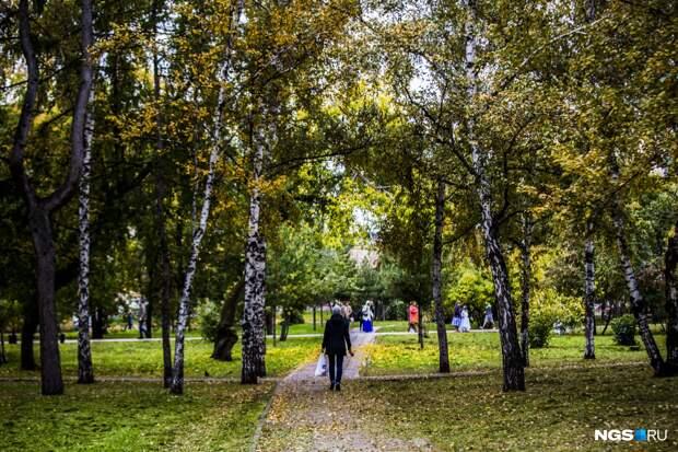 В Новосибирск идет потепление до +8 градусов. Когда его ждать?