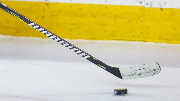 СМИ: Шведский тренер вратарей вошёл в тренерский штаб сборной России по хоккею
