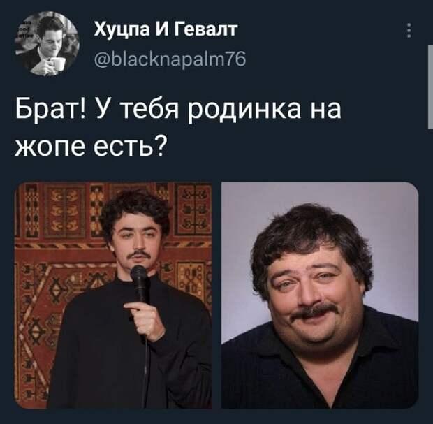 """Никита Михалков: """"Почему мы должны терпеть это в своём доме?"""""""