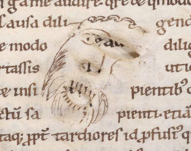 Разрезы, которые писец превратил в мужской портрет.