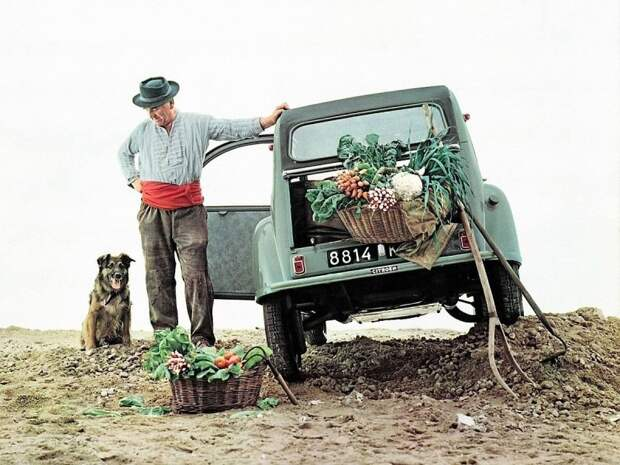 Согласно популярной версии главной аудиторией Citroen 2CV должны были стать французские селяне Citroen 2CV, citroen, авто, автомобили, олдтаймер, ретро авто, францкзкий авто