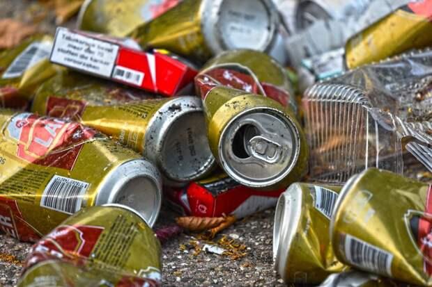 За несвоевременный вывоз мусора «Жилищник района Куркино» заплатит штраф в 300 тысяч рублей