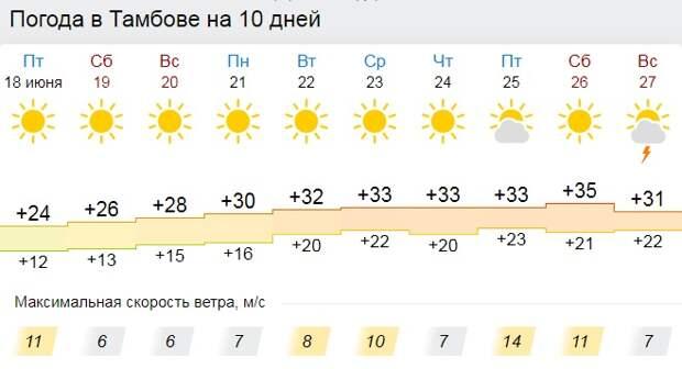 В Тамбов придёт затяжная жара