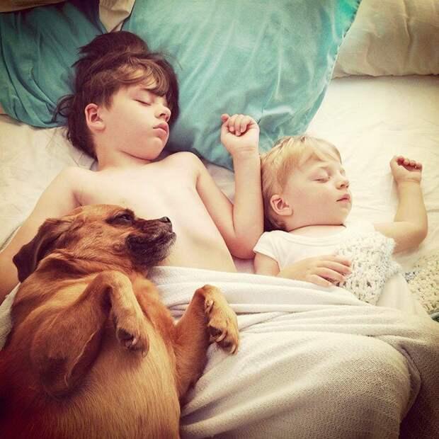 Когда детям непременно нужна собака