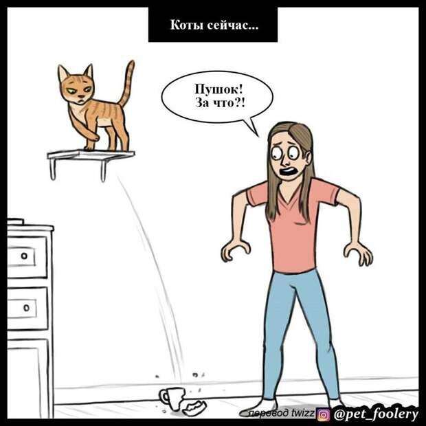 3. животные, комикс, кошка, кошки, рисунки, тогда и сейчас, юмор