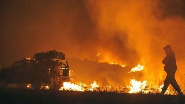 Гидрометцентр перечислил регионы с высоким риском природных пожаров