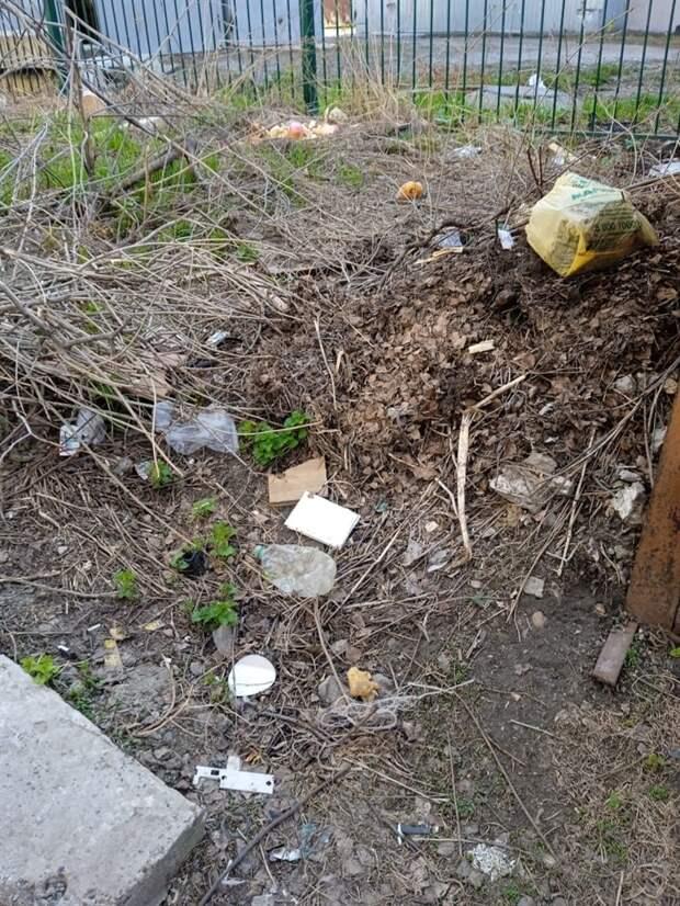 Листва, ветки и доски: кто должен вывозить мусор после ремонта и субботника?