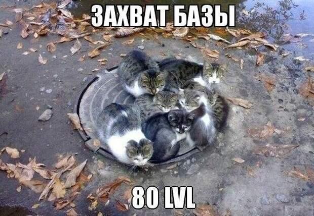 JVqZDMTx_zg