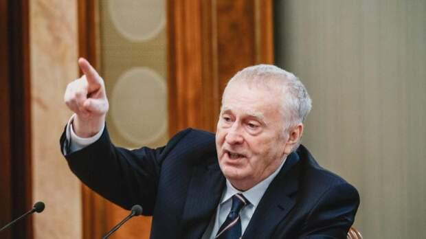 Жириновский заступился за уволенную из-за секс-блога учительницу