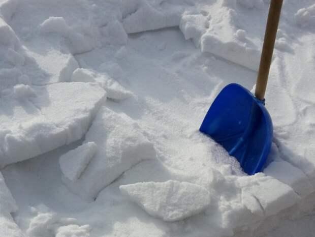 Снег в теплице