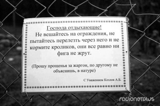 Прикольные объявления и маразмики :)