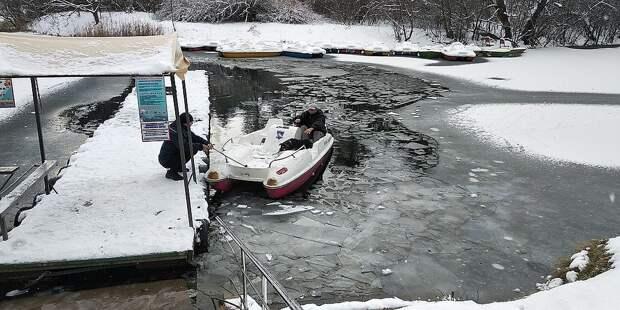 Дворнягу доставили на берег на катамаране. Фото: Леонид Карпов