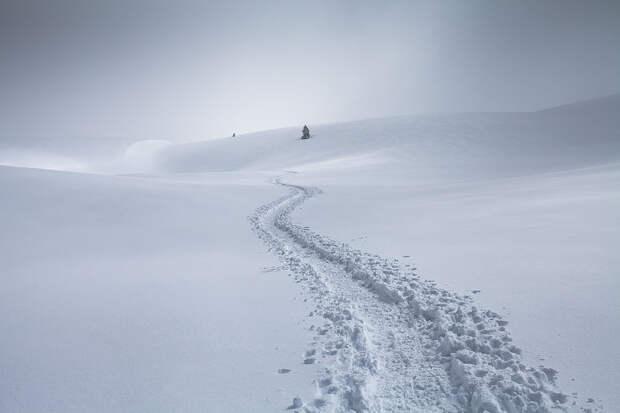 Snow by Vincent Favre on 500px.com