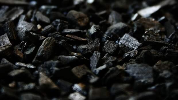 Объем добычи угля в Хабаровском крае достигнет 61,6 млн тонн
