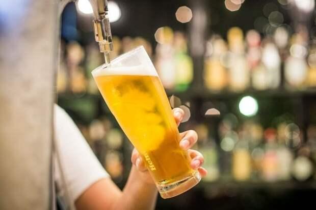 Россия может ограничить импорт чешского пива - СМИ