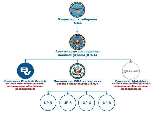 Структура управления биологическими проектами на Украине. Фото: Сергей Судаков