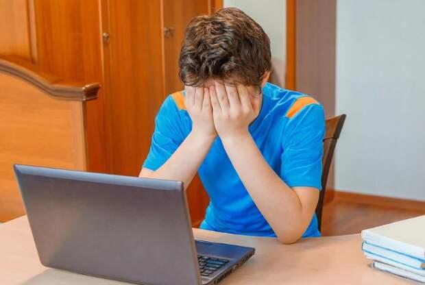 Британские школьники ради выполнения домашнего задания посмотрели порно