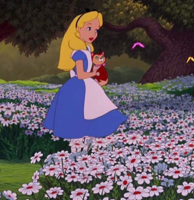 Алиса в реальности. Глава VIII.