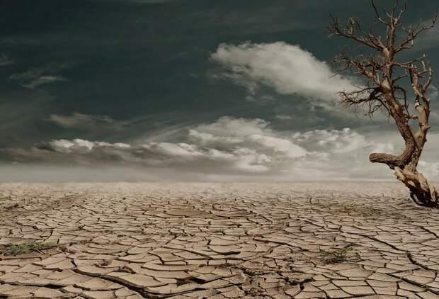 Крымские власти знали о засухе и позволили наступить безводью