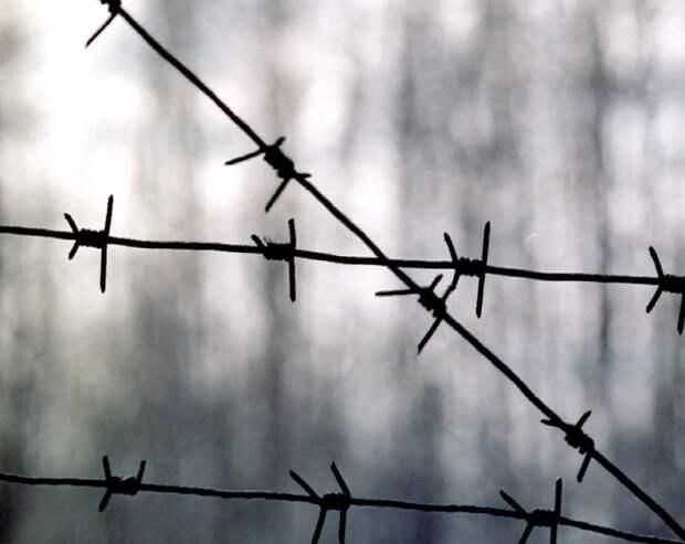 После побега особо опасных заключённых в Дагестане возбудили дело о халатности