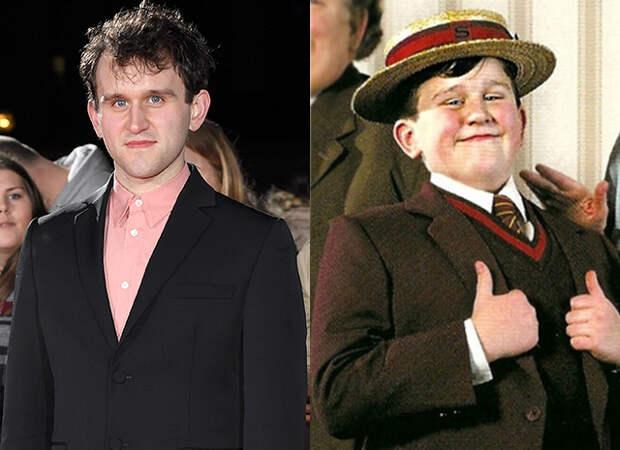 Дадли Дурсль из «Гарри Поттера» сильно изменился. А вы бы его узнали?
