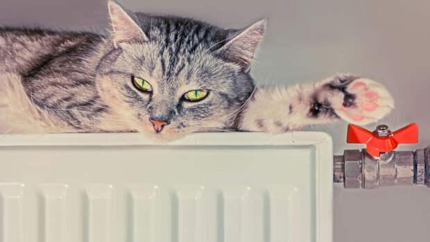 Отопление отключили почти в 70% зданий в Москве