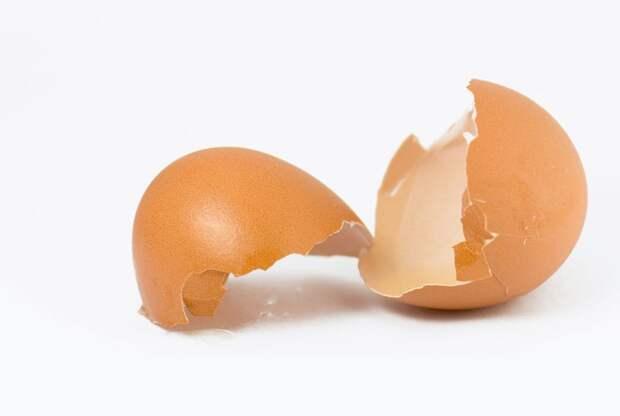 Состав и лечебные свойства яичной скорлупы