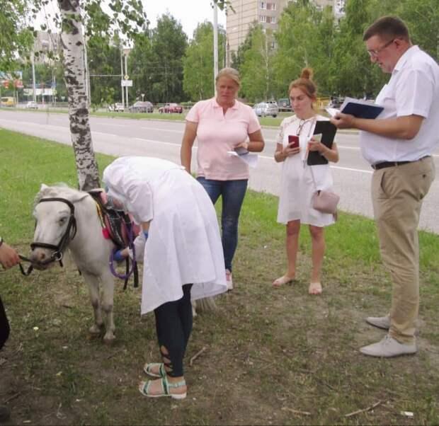 Ветеринары проверили состояние животных у ТЦ «Радуга» в Ижевске после жалоб жителей