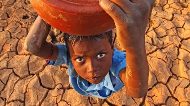 Климат и вопросы продовольствия: как они связаны?