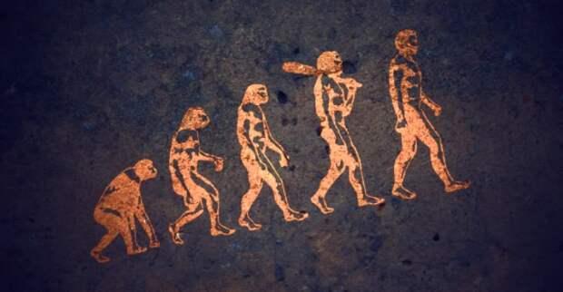 Эволюция человека происходит быстрее, чем когда-либо за последние 250 лет