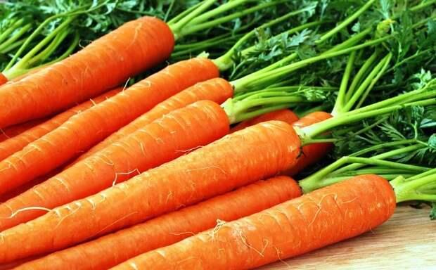 Почему морковь вырастает несладкая?
