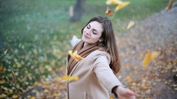 Станет теплее, а ветер останется. О погоде в Алтайском крае 24 октября