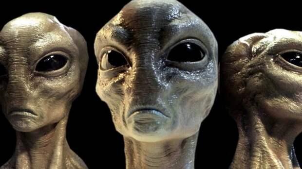 «Есть простое объяснение: «инопланетяне» – это мы», – считает профессор антропологии