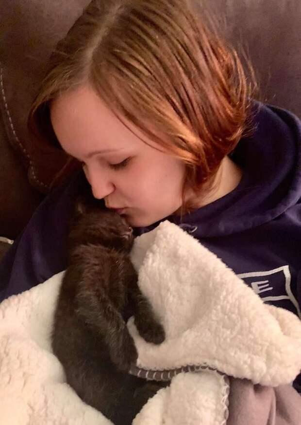 Больному котёнку подарили мягкое одеяло. Спустя 10 месяцев он по-прежнему с ним не расстаётся