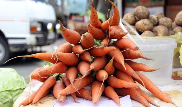 ВОмске снова подешевела морковь