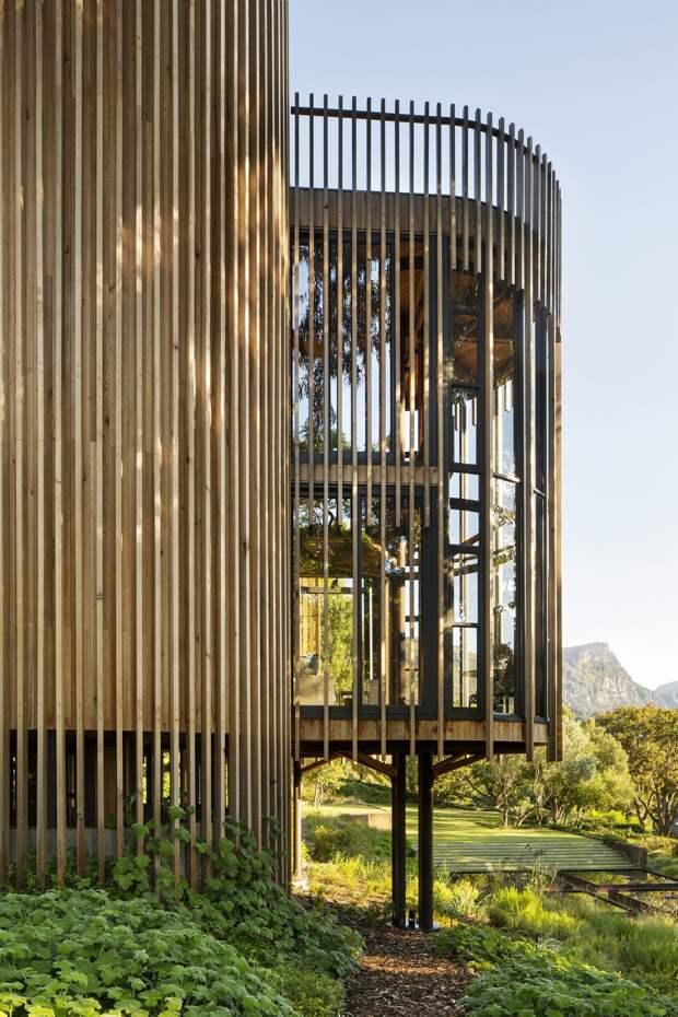 Современный дом на дереве в Кейптауне